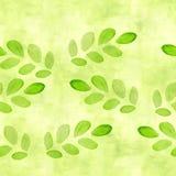 Gazon zieleń, wapno koloru bezszwowy wzór z akwarelą kiełkuje i rozgałęzia się z liśćmi dla scrapbooking Ręka Malująca royalty ilustracja