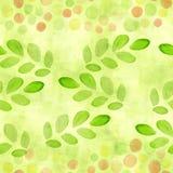 Gazon zieleń, wapno koloru bezszwowy wzór z akwarelą kiełkuje, rozgałęzia się z, liśćmi i punktami dla scrapbooking Ręka Malująca ilustracji