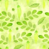 Gazon zieleń, wapno koloru bezszwowy wzór z akwarela grochem kiełkuje i rozgałęzia się z liśćmi dla scrapbooking Ręka Malująca ilustracji