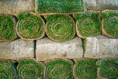 Gazons naturels roulés d'herbe image libre de droits