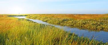gazonu idylliczny strumień obrazy stock