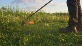Gazonu kosiarza m??czyzny aryma?u trawa w kraj stronie zbiory wideo
