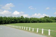 gazony parkują s drzewa Obrazy Stock