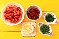 gazpacho汤的成份 库存图片