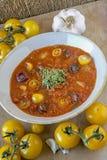 Gazpacho,冷的安达卢西亚的汤 库存照片