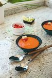 gazpacho ανασκόπησης κουζίνας εστίασης πορτοκαλιών εκλεκτικό ισπανικό κρασί ρυζιού paella κόκκινο Ανδαλουσιακή κρύα σούπα που εξυ Στοκ Εικόνες