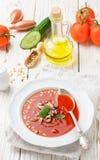 gazpacho Γαστρονομική σούπα ντοματών με τα φρέσκα λαχανικά Στοκ φωτογραφίες με δικαίωμα ελεύθερης χρήσης