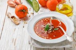 gazpacho Γαστρονομική σούπα ντοματών με τα φρέσκα λαχανικά Στοκ Εικόνα