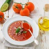 gazpacho Γαστρονομική σούπα ντοματών με τα φρέσκα λαχανικά Στοκ φωτογραφία με δικαίωμα ελεύθερης χρήσης