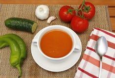 Gazpacho και τα συστατικά του στοκ φωτογραφία με δικαίωμα ελεύθερης χρήσης