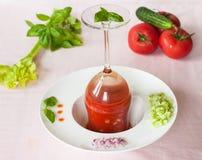 Gazpacho -与菜的冷的蕃茄汤 免版税库存照片