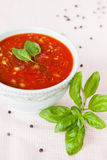 Gazpacho -与菜的冷的蕃茄汤 免版税库存图片