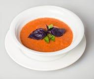gazpacho Royalty-vrije Stock Afbeelding