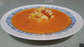 Gazpacho andaluso fotografia stock