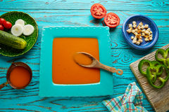Gazpacho andaluz tomato soup and vegetables. Gazpacho andaluz is a fresh tomato soup and vegetables of Andalusian Spain Royalty Free Stock Images