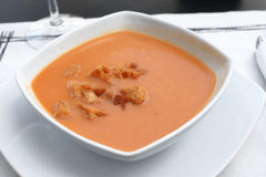 Gazpacho, cold tomato soup Stock Images