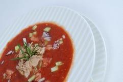Gazpacho com atum Imagens de Stock Royalty Free