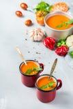 Gazpacho de la sopa de la pimienta del tomate con ajo Fotos de archivo libres de regalías