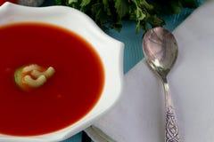 Gazpacho del tomate en el plato blanco Imágenes de archivo libres de regalías