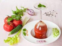 Gazpacho - eine kalte Tomatensuppe mit Gemüse Lizenzfreie Stockbilder