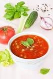 Gazpacho - en kall tomatsoppa med grönsaker Arkivfoton