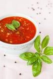 Gazpacho - en kall tomatsoppa med grönsaker Royaltyfri Bild
