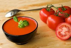 Gazpacho espanhol frio da sopa Fotografia de Stock