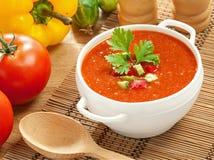 Gazpacho et ingrédients Photos stock