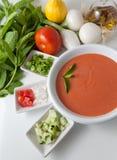 Gazpacho et ingrédients Photo libre de droits