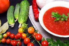 Gazpacho frío de la sopa del verano Fotografía de archivo