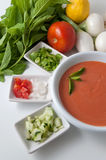 Gazpacho and ingredients Royalty Free Stock Images