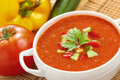 Gazpacho and ingredients Stock Image