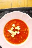 Gazpacho kall grönsaksoppa royaltyfri bild
