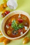 Gazpacho, kalte spanische Suppe stockbild