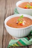Gazpacho in kommen Stock Afbeelding