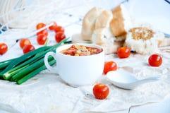 Gazpacho och ingredienser på en tabell Arkivbilder