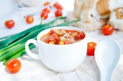 Gazpacho och ingredienser på en tabell Royaltyfria Bilder
