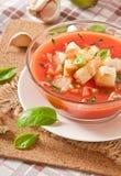 Gazpacho polewka Zdjęcia Stock