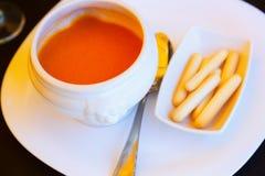 Gazpacho - sopa fria espanhola Fotografia de Stock Royalty Free