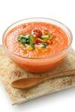 Gazpacho, sou végétal froid espagnol Image libre de droits