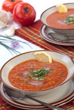 Gazpacho soup. Two bowls of delicious cold Gazpacho soup with cucumber - avocado salsa. Good summer time appetizer Stock Images