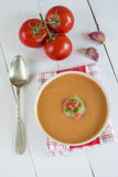 Gazpacho soup Royalty Free Stock Image