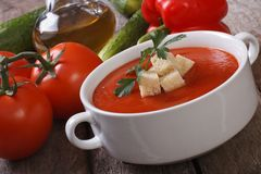 Gazpacho soup with croutons Royalty Free Stock Images