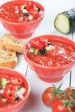 Gazpacho soup Stock Image