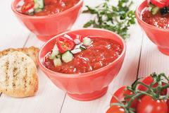 Gazpacho tomato soup Royalty Free Stock Photo