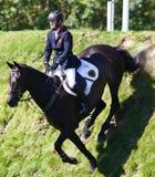 GBR :骑马Hickstead跃迁德比2011年 库存照片