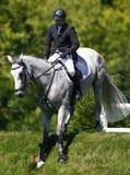 GBR: Equestrian Hickstead Skacze derby 2011 Zdjęcia Royalty Free