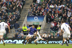 GBR: Rugby Union England Vs Samoa Stock Photo