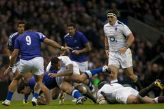 GBR: Rugby Union England Vs Samoa Royalty Free Stock Photography