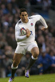 GBR: Rugby Union England Vs Samoa Stock Images
